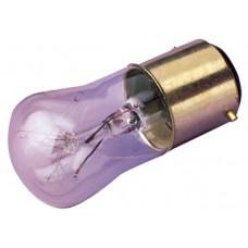 Pygmy Lamp - BC