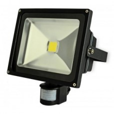 50W High Power LED Floodlight with PIR