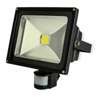 30W High Power LED Floodlight With PIR